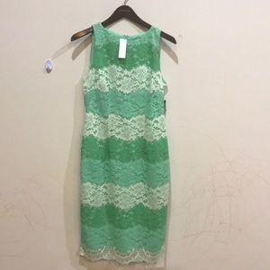 NY&CO brand new lace dress 🍀🌸🌺🌺💕💖❤️️💚💞💗